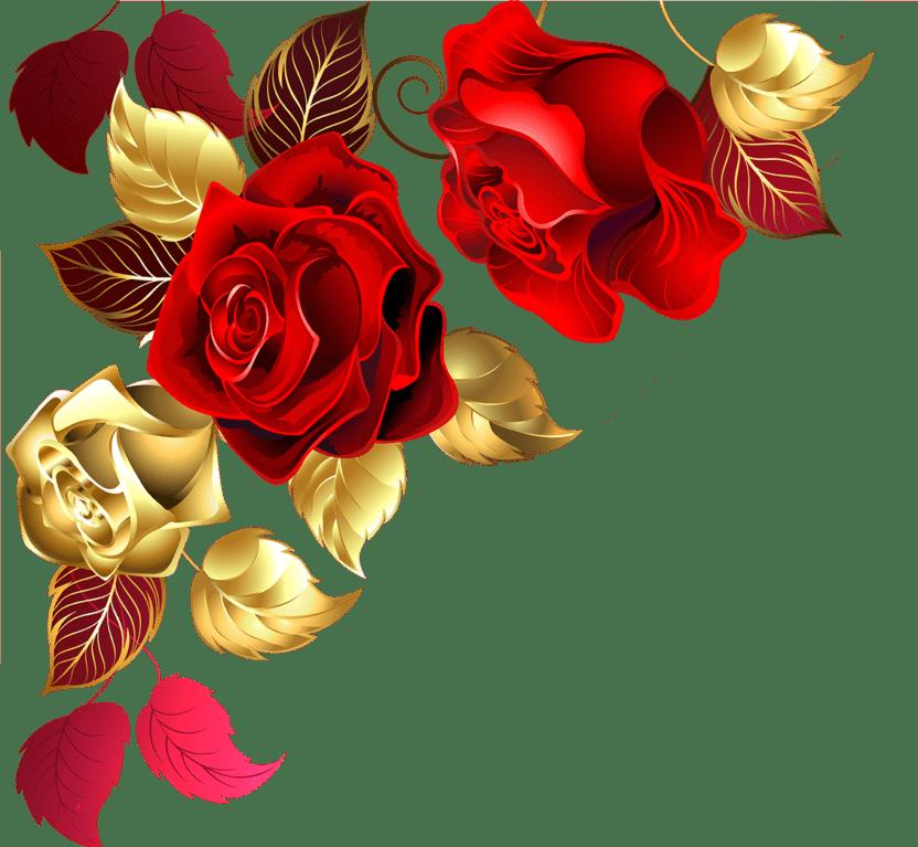 Rose en bas gauche